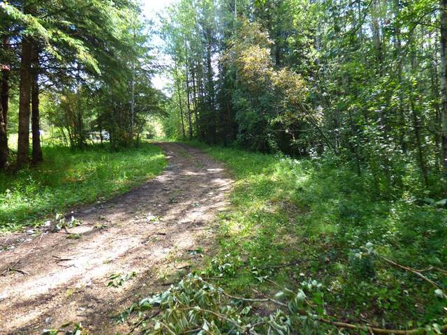 40 165052 TWP RD 714, Wandering River, AB T0A 0M0 (MLS #A1054929) :: Weir Bauld and Associates