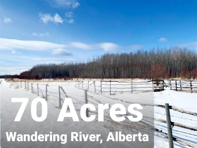 173 Range Road N, Wandering River, AB T0A 3M0 (MLS #A1084497) :: Weir Bauld and Associates