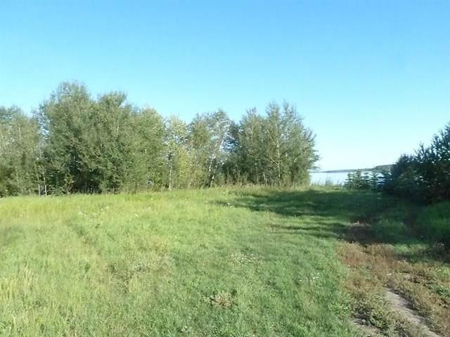 68335 Campsite Road, Plamondon, AB T0A 2T0 (MLS #A1145042) :: Weir Bauld and Associates