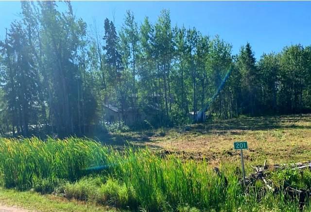 #201 15538 Old Trail Road, Plamondon, AB T0A 2C2 (MLS #A1027830) :: Weir Bauld and Associates