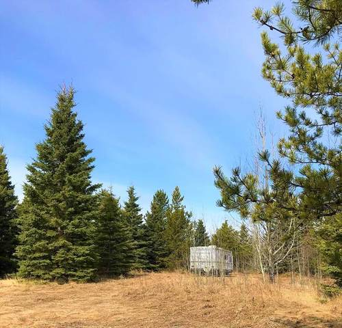 20 68165 Campsite Road, Plamondon, AB T0A 2C0 (MLS #A1102674) :: Weir Bauld and Associates