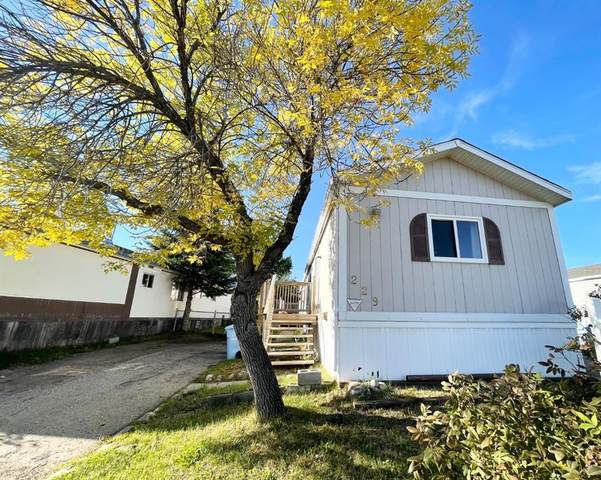 229 Grey Crescent, Fort McMurray, AB T9H 2N7 (MLS #A1148237) :: Weir Bauld and Associates