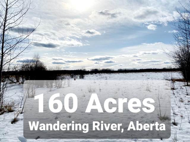 173 Range Road, Wandering River, AB T0A 0M0 (MLS #A1083411) :: Weir Bauld and Associates