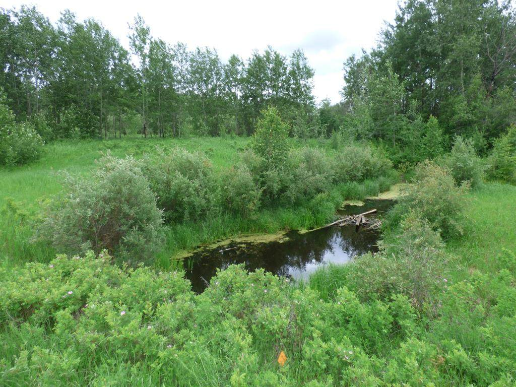 Township Road 674 Range Road 150, River Lot 31 - Photo 1