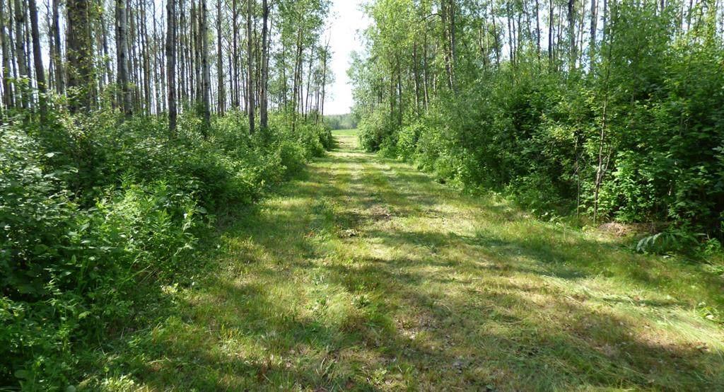 13179 Township Road 644 Road - Photo 1