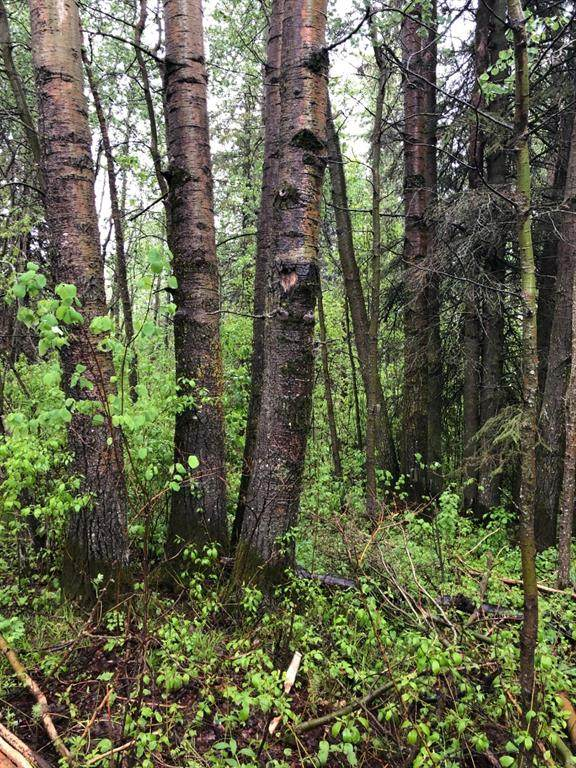 Lot A, plan 6886ET Campsite Road - Photo 1