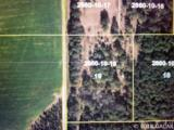 Lot 19 254th Lane - Photo 1