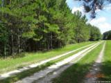 00000 County Road 239 - Photo 1