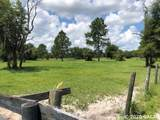5510 County Road 219A - Photo 7