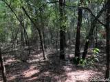 TBD 37th Trail - Photo 13