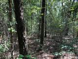 TBD 37th Trail - Photo 18