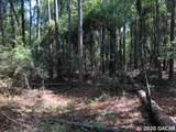 TBD 37th Trail - Photo 9