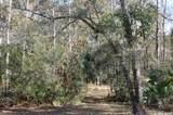 TBD Little Orange Creek Road - Photo 12