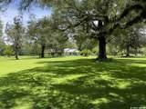 3850 County Road 326 - Photo 20