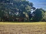 10412 County Road 235 Road - Photo 6