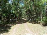 Tract  115 Buck Trail - Photo 13