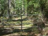 Tract  115 Buck Trail - Photo 14