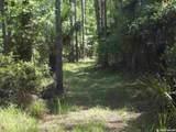 Tract  115 Buck Trail - Photo 16
