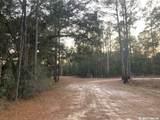 TBD Pine Cone Court - Photo 1