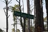 TBD Pine Cone Court - Photo 11