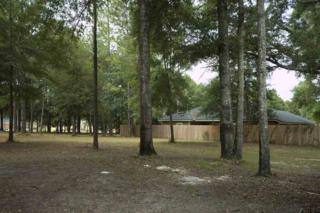 19258 NW 226th Terrace, High Springs, FL 32643 (MLS #401252) :: Thomas Group Realty