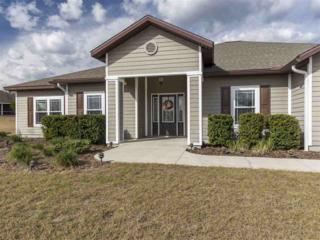 17640 NW 253rd Drive, High Springs, FL 32643 (MLS #401440) :: Thomas Group Realty