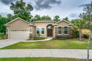 8962 SW 73rd Lane, Gainesville, FL 32608 (MLS #401610) :: Thomas Group Realty