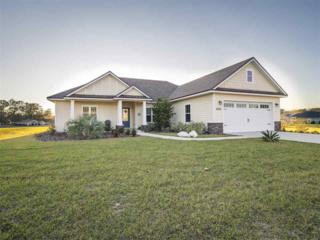 17572 NW 251st Drive, High Springs, FL 32643 (MLS #401768) :: Thomas Group Realty