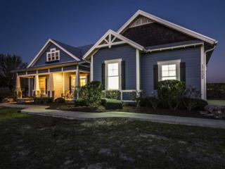 17605 NW 256TH Street, High Springs, FL 32643 (MLS #401771) :: Thomas Group Realty