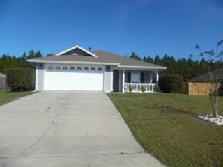 25646 NW 10th Avenue, Newberry, FL 32669 (MLS #402179) :: Thomas Group Realty
