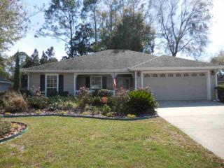 25445 NW 9th Road, Newberry, FL 32669 (MLS #402674) :: Thomas Group Realty