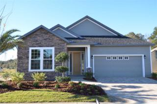 13699 NW 12th Place, Newberry, FL 32669 (MLS #403026) :: Thomas Group Realty