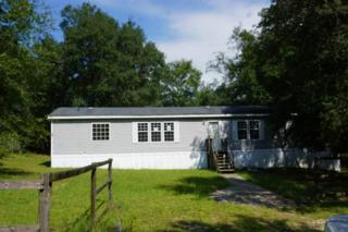 240 2nd Street, Melrose, FL 32666 (MLS #403421) :: Thomas Group Realty