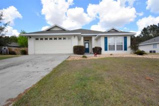 25550 NW 10th Avenue, Newberry, FL 32669 (MLS #403701) :: Thomas Group Realty