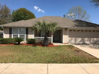 25256 NW 9th Road, Newberry, FL 32669 (MLS #404056) :: Thomas Group Realty