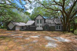 16018 SW 15th Avenue, Newberry, FL 32669 (MLS #404360) :: Thomas Group Realty