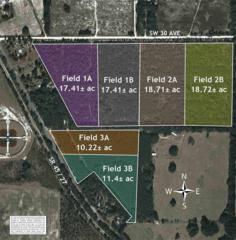 Field 3A Hwy 41, Newberry, FL 32669 (MLS #404419) :: Bosshardt Realty