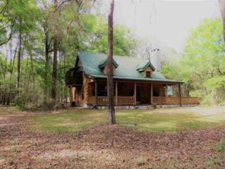 26450 NW 166th Ave, High Springs, FL 32643 (MLS #404423) :: Thomas Group Realty
