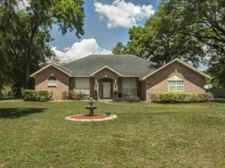 24408 Newberry Lane, Newberry, FL 32669 (MLS #404448) :: Bosshardt Realty