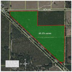 Field 15A Sw 46 Ave, Newberry, FL 32669 (MLS #404451) :: Bosshardt Realty