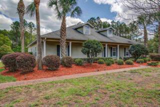 1013 SW 126th Street, Newberry, FL 32669 (MLS #404459) :: Bosshardt Realty