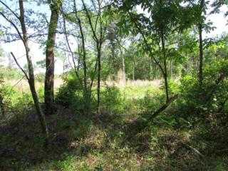 Lot 11 SW 99th Avenue, Lake Butler, FL 32054 (MLS #404503) :: Thomas Group Realty