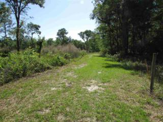 Lot 12 SW 99th Avenue, Lake Butler, FL 32054 (MLS #404504) :: Thomas Group Realty