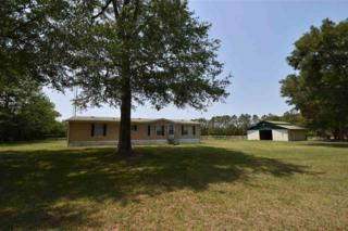 5618 NW 234th Street, Newberry, FL 32669 (MLS #404543) :: Thomas Group Realty