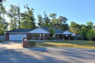 25788 SW 22nd Place, Newberry, FL 32669 (MLS #405099) :: Bosshardt Realty