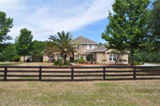 610 NW 156th Way, Newberry, FL 32669 (MLS #405242) :: Bosshardt Realty