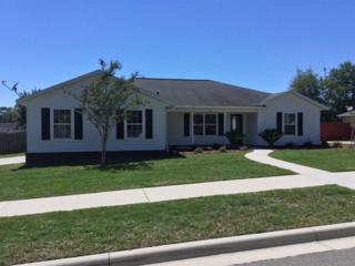 906 NW 254 Drive, Newberry, FL 32669 (MLS #405510) :: Bosshardt Realty