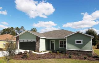 19139 NW 229th Street, High Springs, FL 32643 (MLS #401543) :: Thomas Group Realty