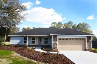 19371 NW 229th Street, High Springs, FL 32643 (MLS #401244) :: Thomas Group Realty