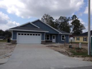 19316 NW 228th Street, High Springs, FL 32643 (MLS #401544) :: Thomas Group Realty